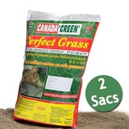 Perfect Grass - 2x1kg