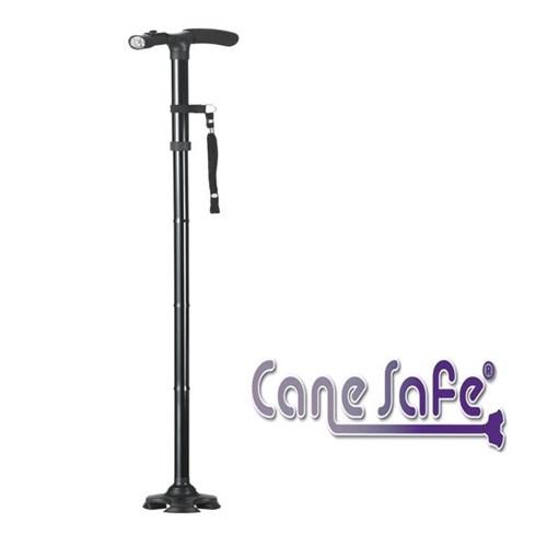 CANE SAFE LOT DE 2